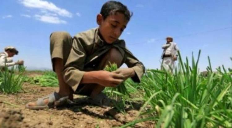#الأمم_المتحـدة: #اليـمن ضمن ثماني دول مهددة بخطر المجاعة في العالم