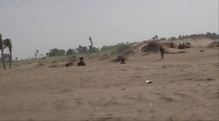 المليشيا تقصف مواقع القوات المشتركة  ب #الحـديدة