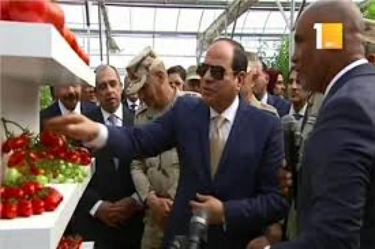بعد طرد الإخوان من مصر...إرتفاع الصادرات الزراعية المصرية الى أعلى مستوى
