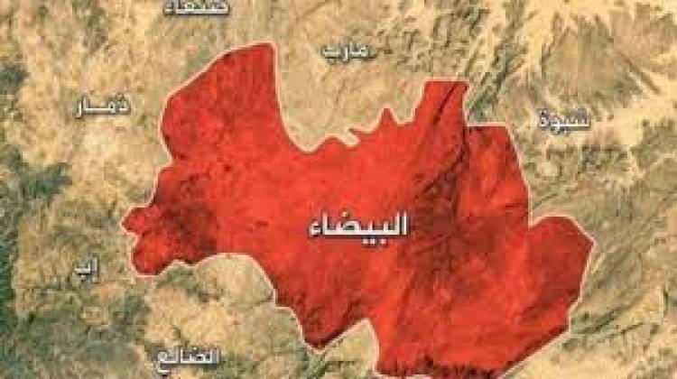 #البيضاء بين مقاومة #الحوثي و مؤامرات #اﻻخوان.